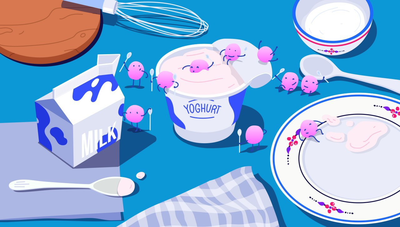yoghurt-bacteria-1