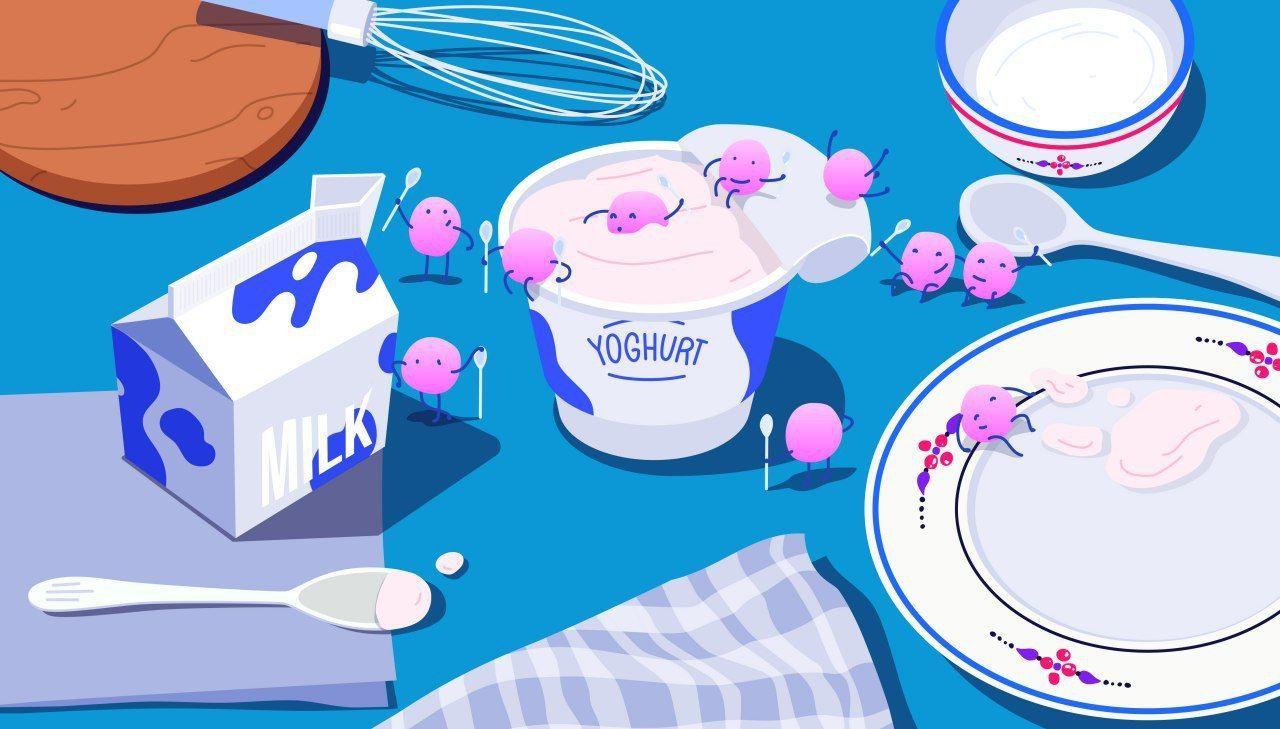 Yoghurt-probiotic-1