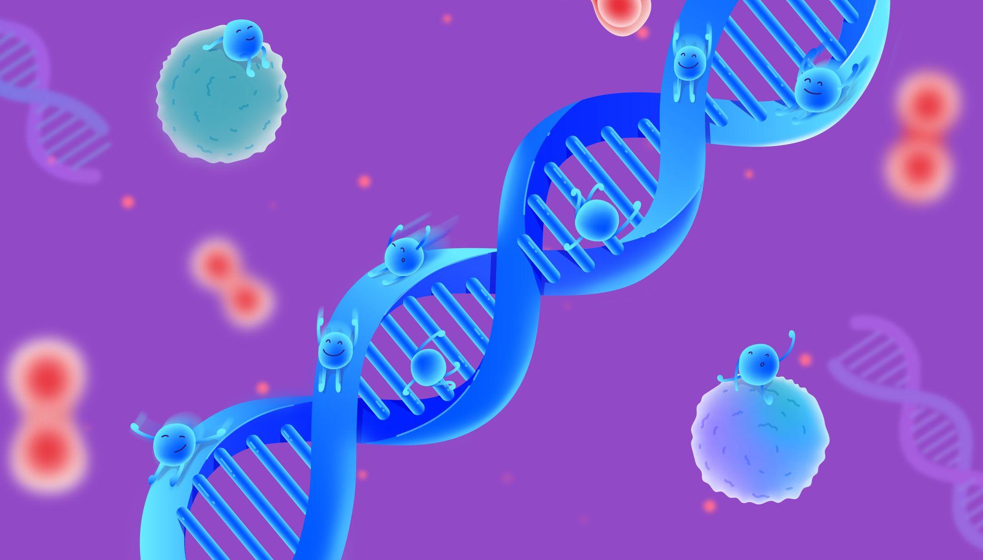 DNa-microbiome-test-bundle