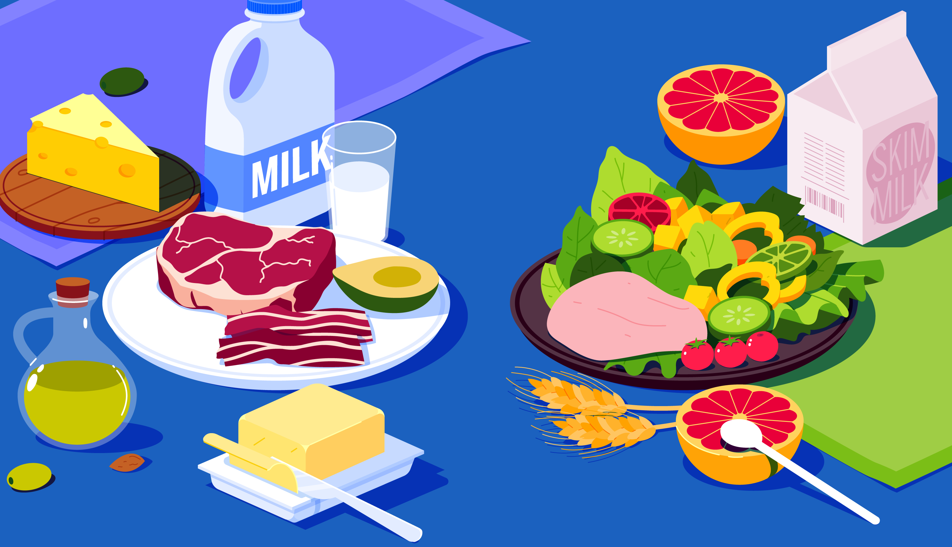 What's The Best Fat Diet: High Fat Vs Low Fat Diet Explained